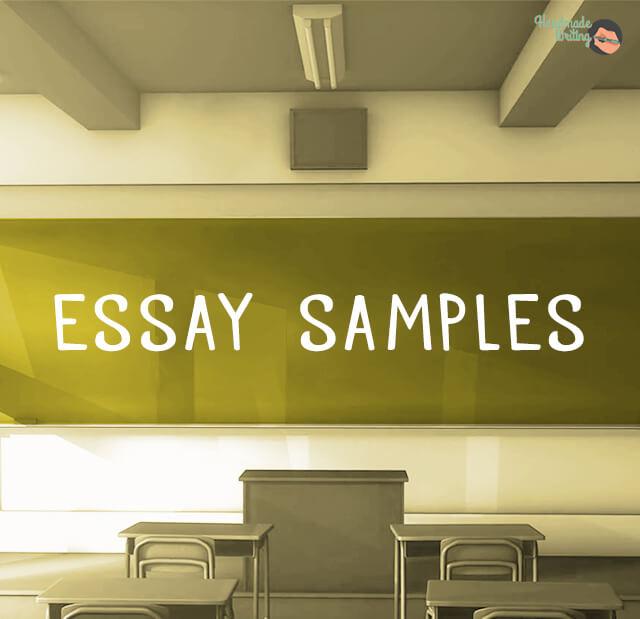 essay example